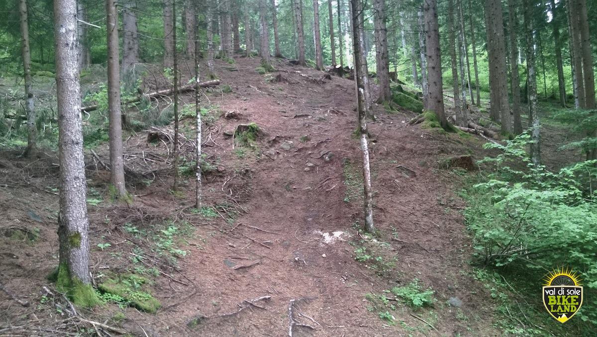 val_di_sole_downhill_tracciato_pista_2014_15
