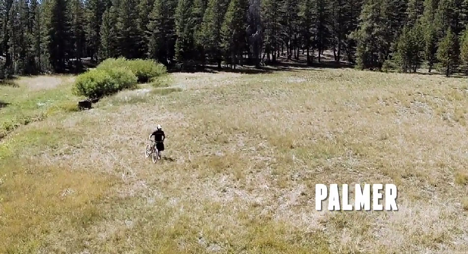 shaun_palmer_2014_intense